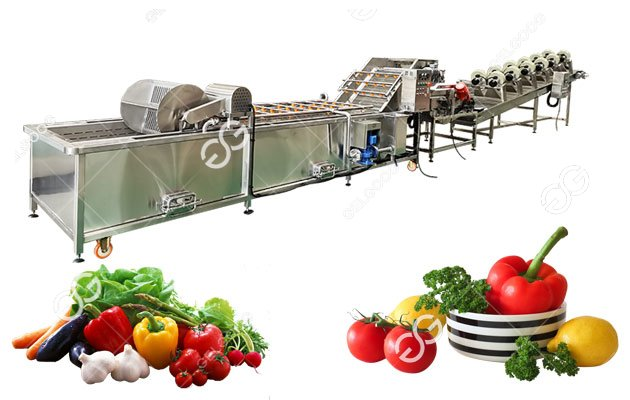 Celebrate The Ecuadorian Customer Receiving The Fruit And Vegetable Dryer