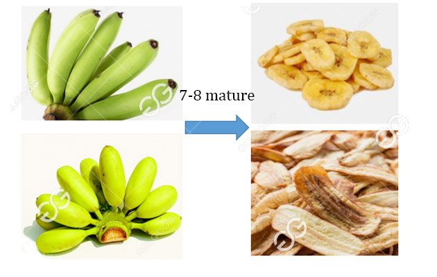 How To Start A Banana Chip Business?