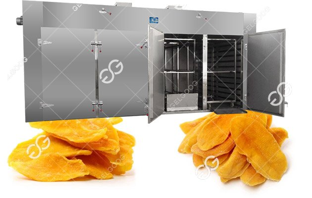 Dried Mango Chips Processing Producti