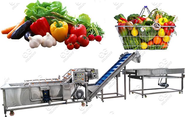 fruit vegetable washing drying machine