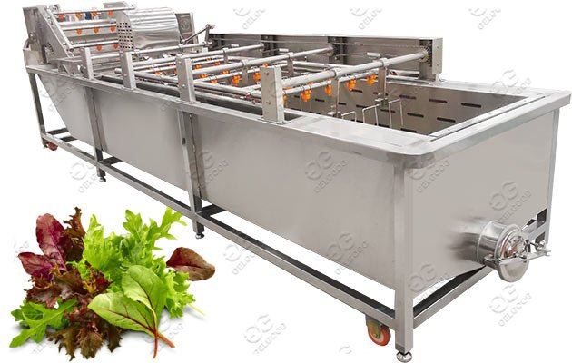 lettuce washing machine