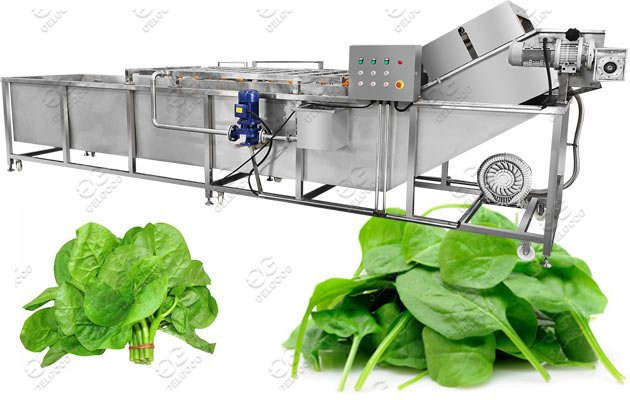 bubble type fruit vegetable washing machine