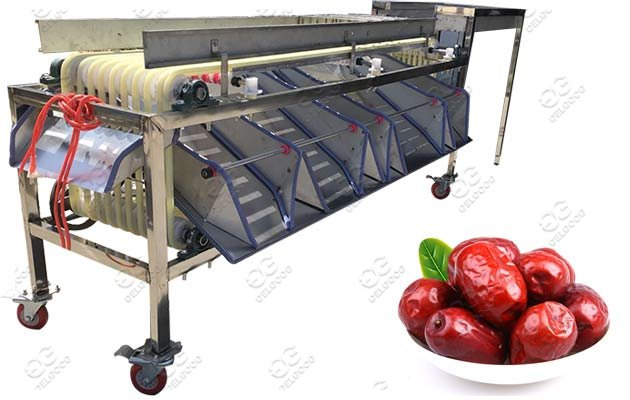 palm date grading machine